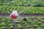 Jual Alat Tanam Jagung dan Biji-Bijian AGR-PN22 di Mataram