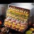 Jual Mesin Food Dehydrator 10 Rak (FDH10) di Mataram