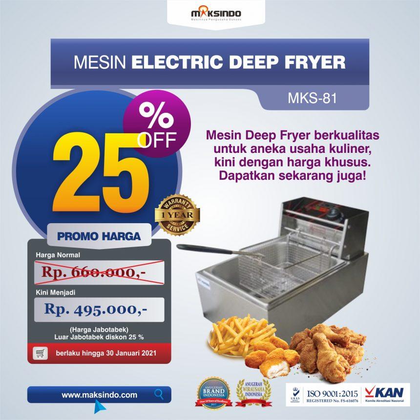 Jual Mesin Electric Deep Fryer MKS-81 di Mataram